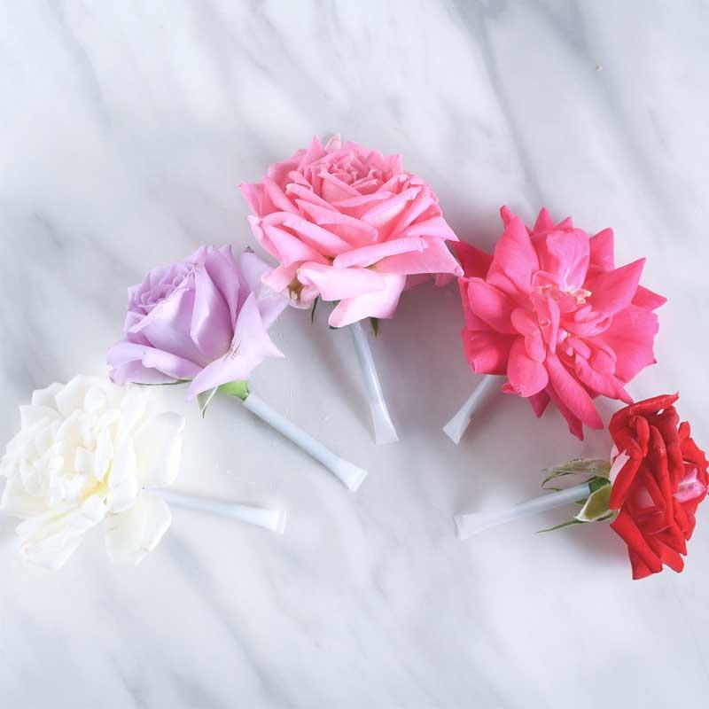 Nobel Rose 食用バラ 5輪MIXセット